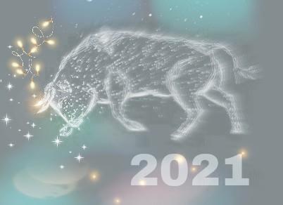 My White Toro 2021 _GenuineLera
